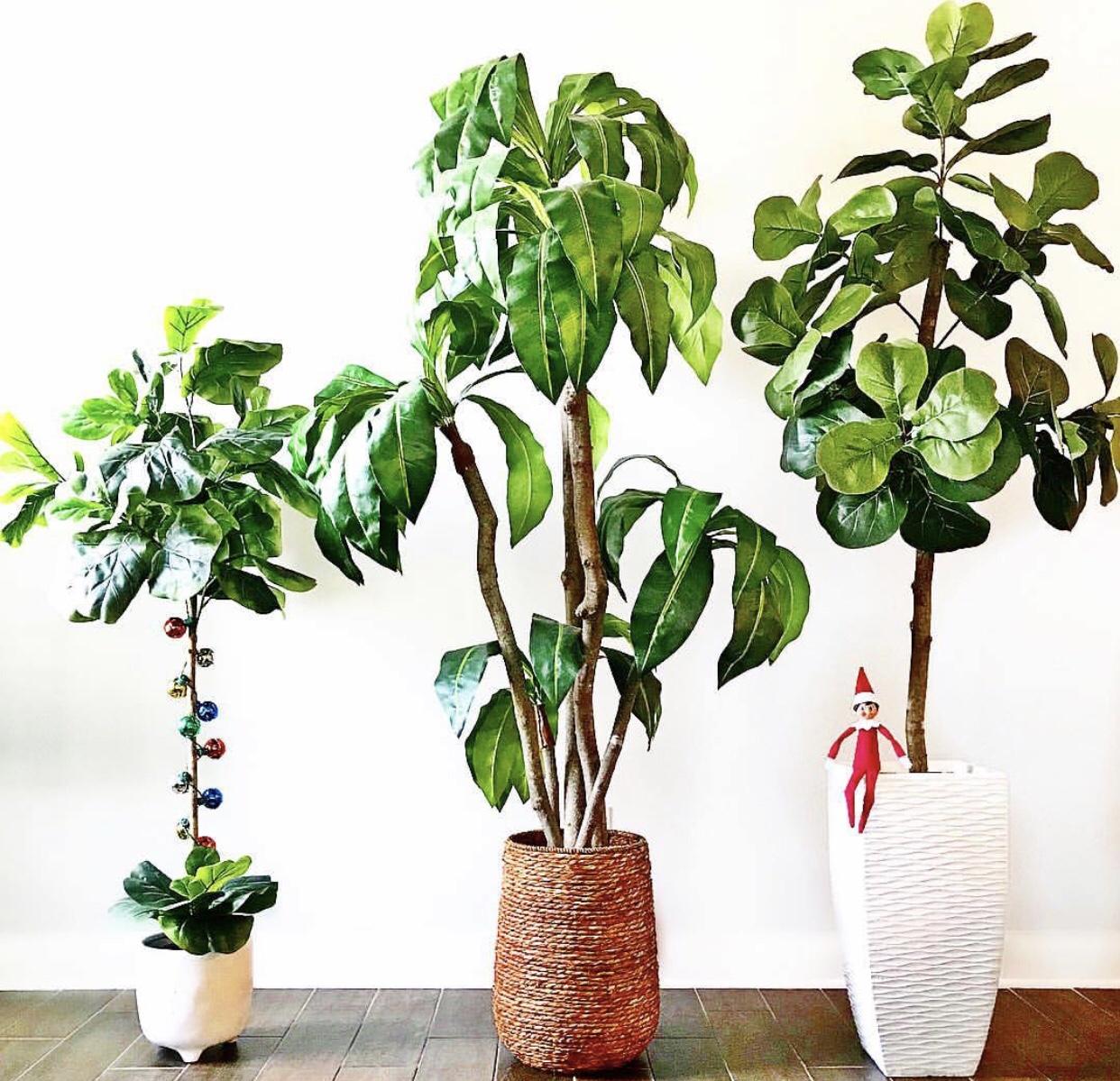 Home Decor Trees