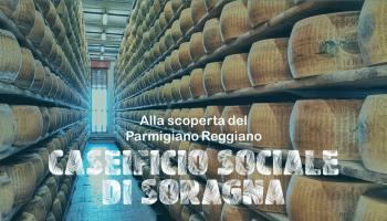 Caseificio Sociale di Soragna - Parmigiano Reggiano