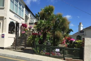 isle of wight February events
