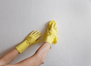 Nettoyage des murs et plafonds / Wall and Ceiling Cleaning Services