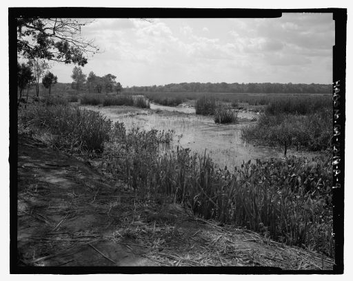 View of Sterling Creek Marsh looking southwest, with the marsh in the background and the berm in the foreground - Richmond Hill Plantation, Sterling Creek Marsh, East of Richmond Hill on Ford Neck Road, Richmond Hill, Bryan County, Georgia