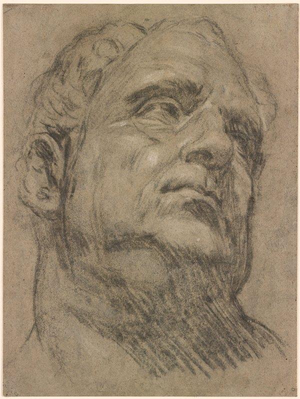 Jacopo Tintoretto -called Head Of Emperor Vitellius Drawings Online Morgan Library