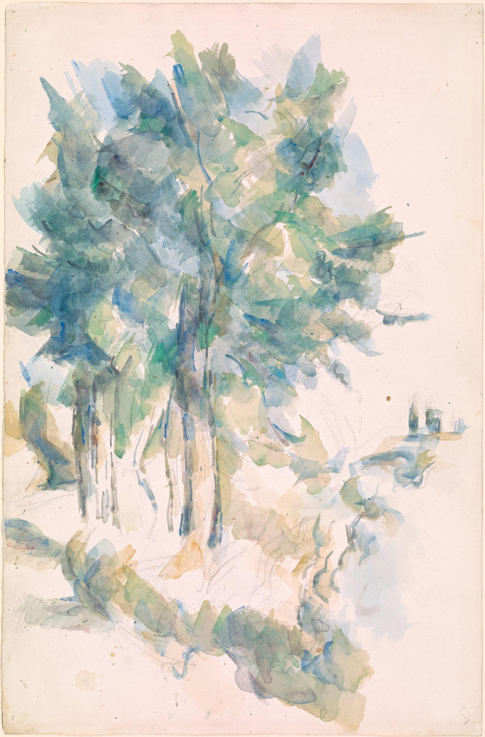 Paul Czanne  Trees  Drawings Online  The Morgan