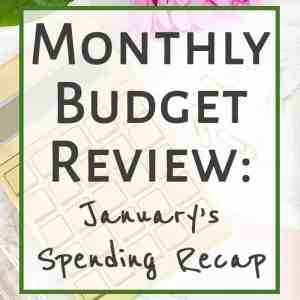 January Budget Review