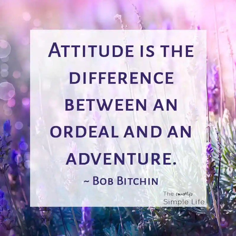 11 Life-Changing Positive Thinking Quotes   Bob Bitchin Quote
