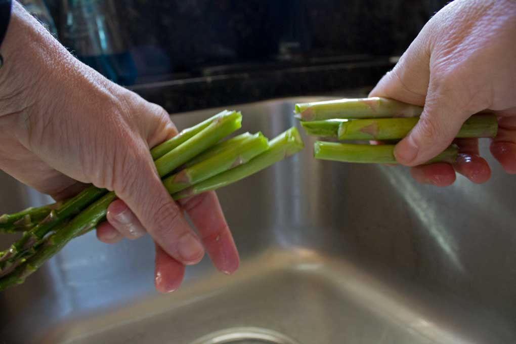 broken asparagus with hands