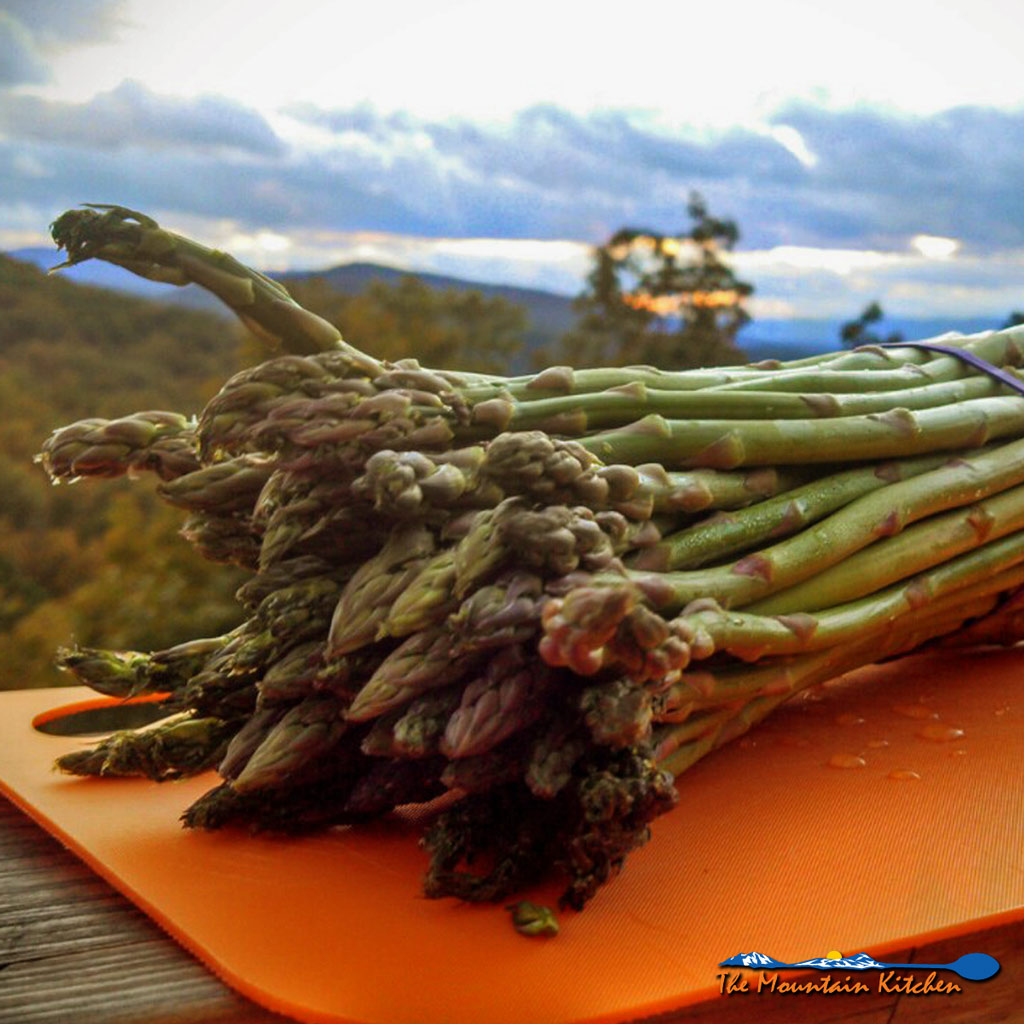 Trimming Asparagus {The Mountain Kitchen Tips