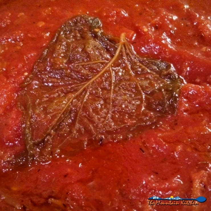 Basic tomato sauce is simply seasoned with onion, garlic and thyme, sweetened slightly with carrot; simmered until thickened. For all your Italian dishes! | TheMountainKitchen.com