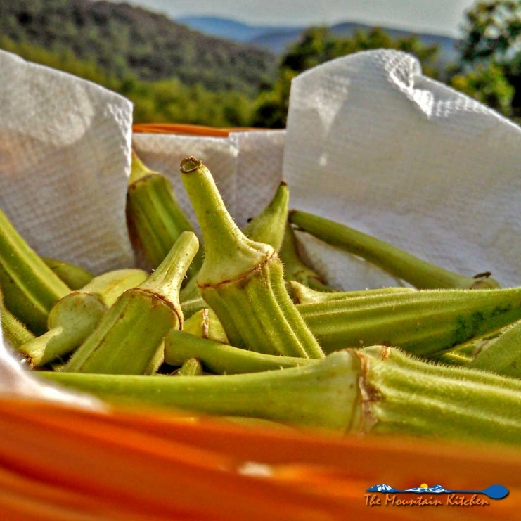 fried okra with mountain view
