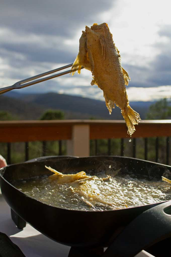 fried fish out of oil with mountains in background