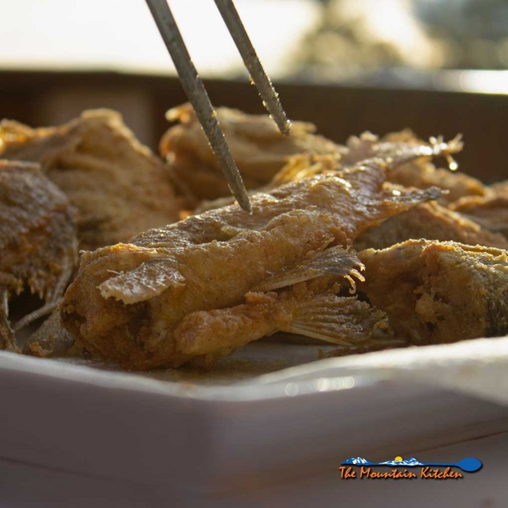 fried white perch