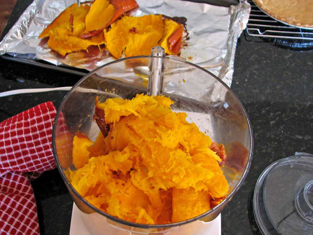 pumpkin in food processor