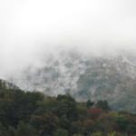 Snow in Fall