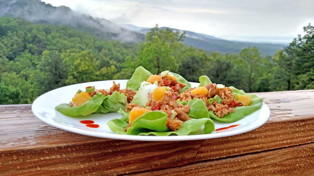 Orange Ginger Chicken Lettuce Cups on plate with rainy mountain view