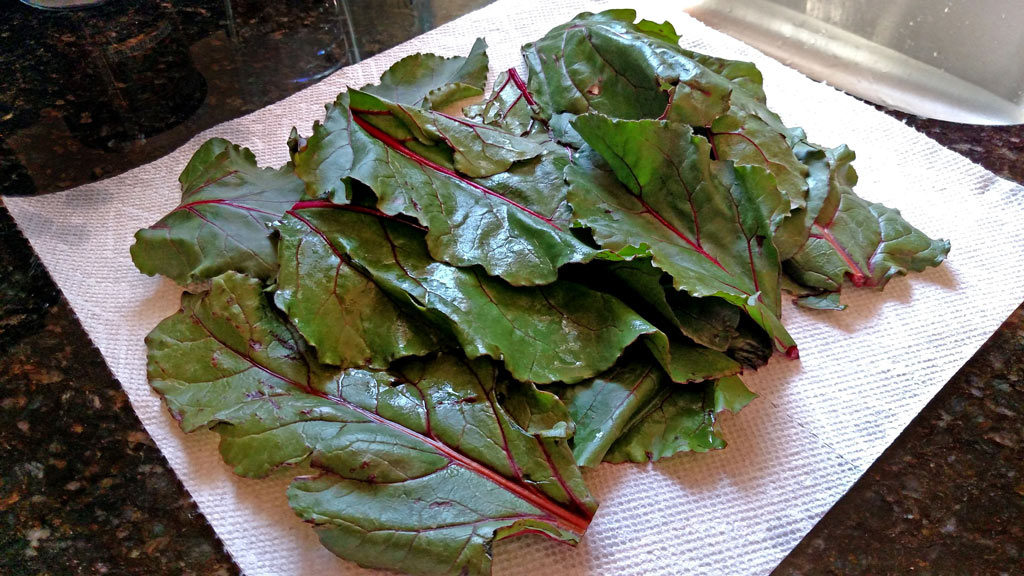beet greens drying on paper towel