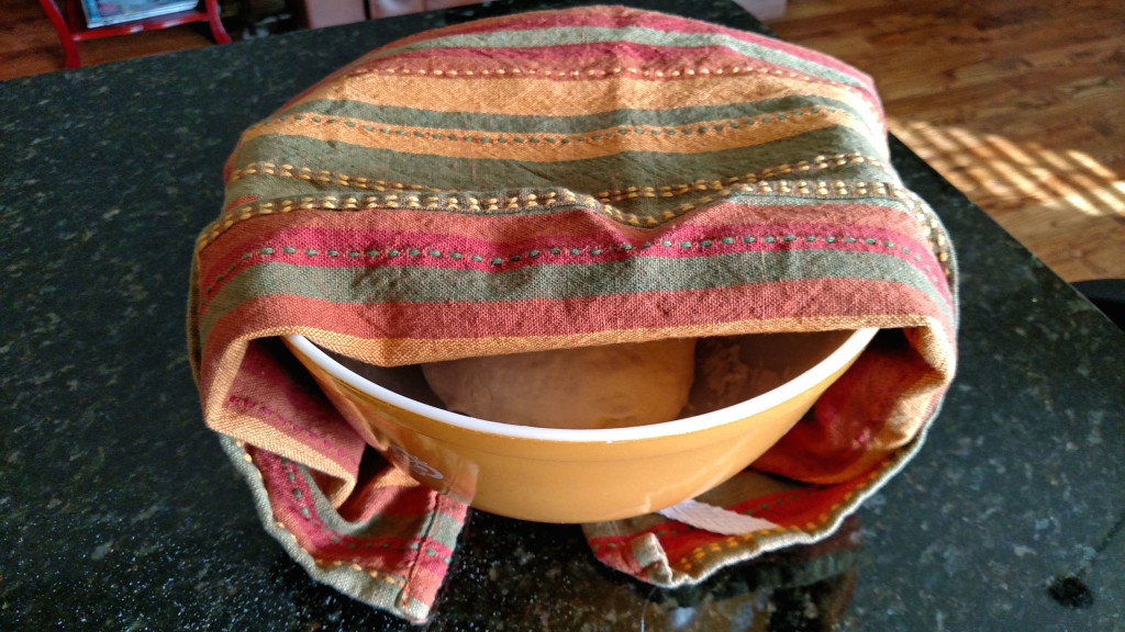 dough resting in bowl with towel on top