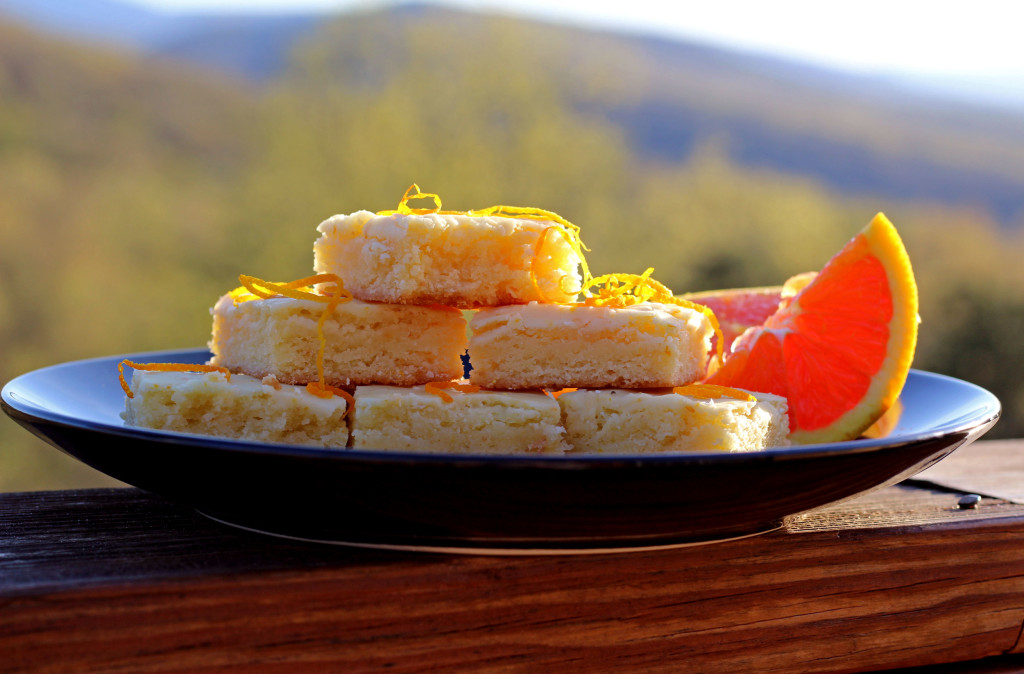 orange brownies with mountain view