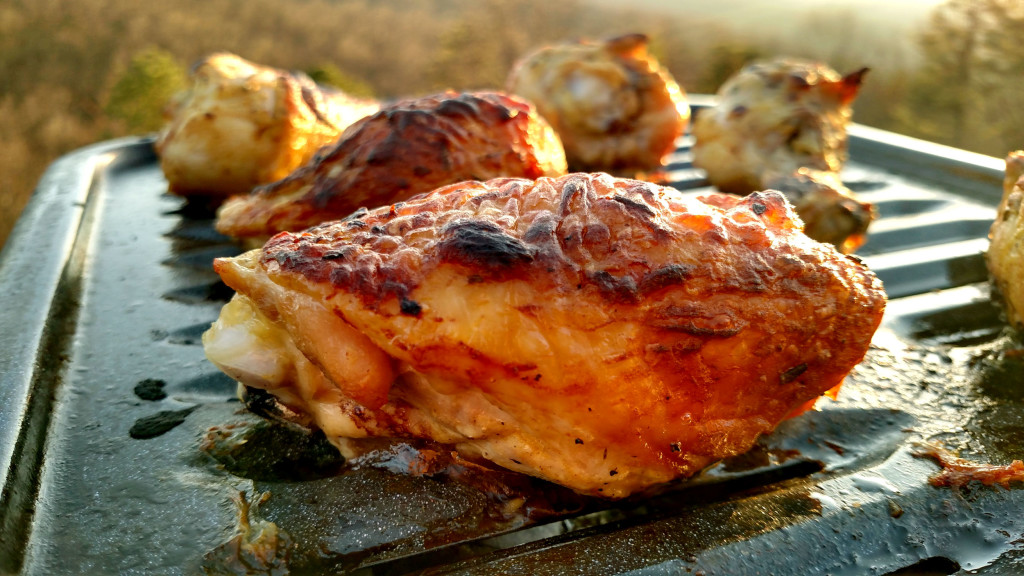 zesty broiled chicken with mountain view