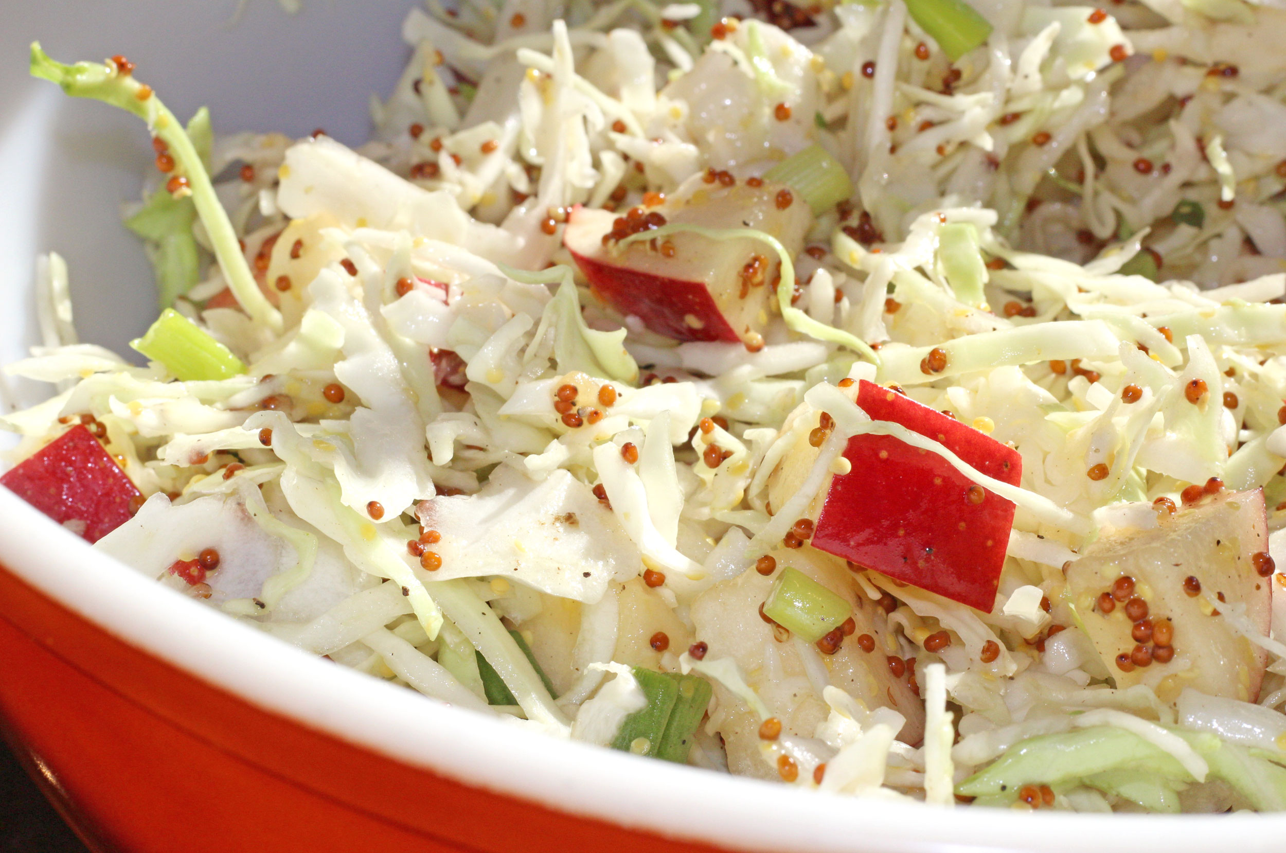 Apple-Cabbage Slaw with crunchy cabbage, crisp apples and green onions tossed with a zesty mustard dressing, this colorful slaw makes a great side dish for any barbecue this summer. | TheMountainKitchen.com