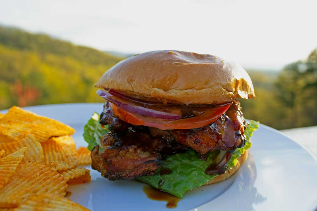 grilled teriyaki chicken sandwich with chips on a plate with mountain view