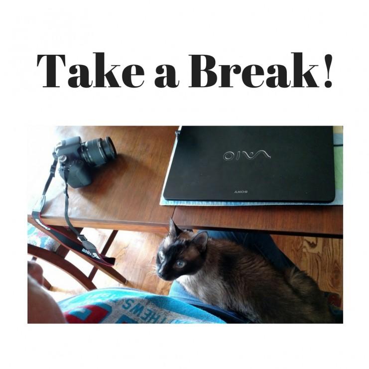 Take a Break! We'll be back soon... | TheMountainKitchen.com