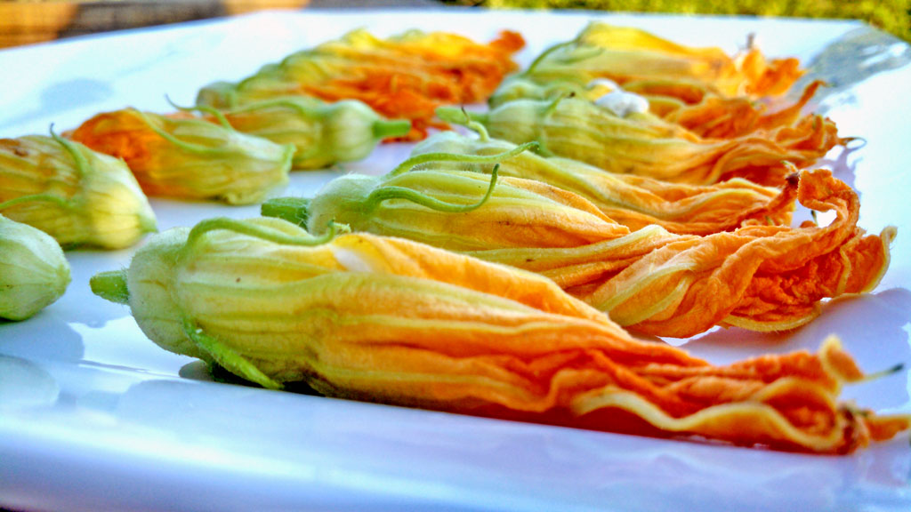 squash blossoms on a plate