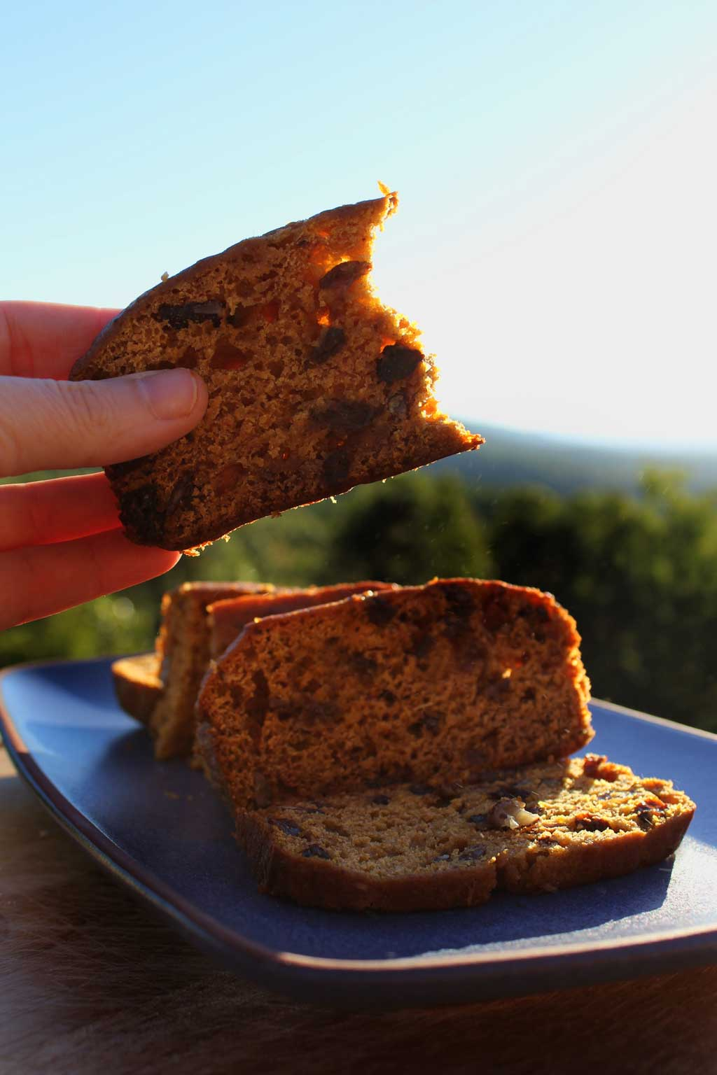 Flavorful and moist, this pumpkin cinnamon bread is bursting with fall pumpkin flavor inevery bite. This easy recipe should be on your fall bucket list!