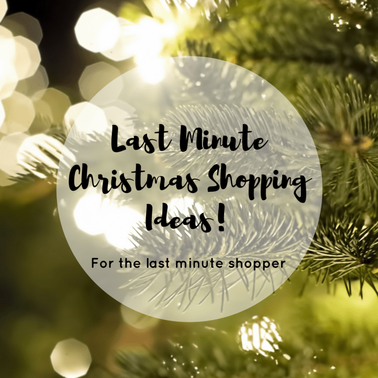 As I was browsing Amazon last night, I came across some really great Christmas shopping ideas for last-minute shoppers, like me!