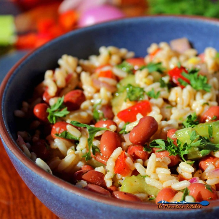 A fresh take on classic Louisiana Creole cuisine, this Red Beans and Rice Salad is a perfect side dish for your next cookout or potluck. Perfect for BBQs!