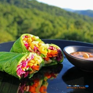Rainbow Roll-Ups With Peanut Sauce {A Meatless Monday Recipe