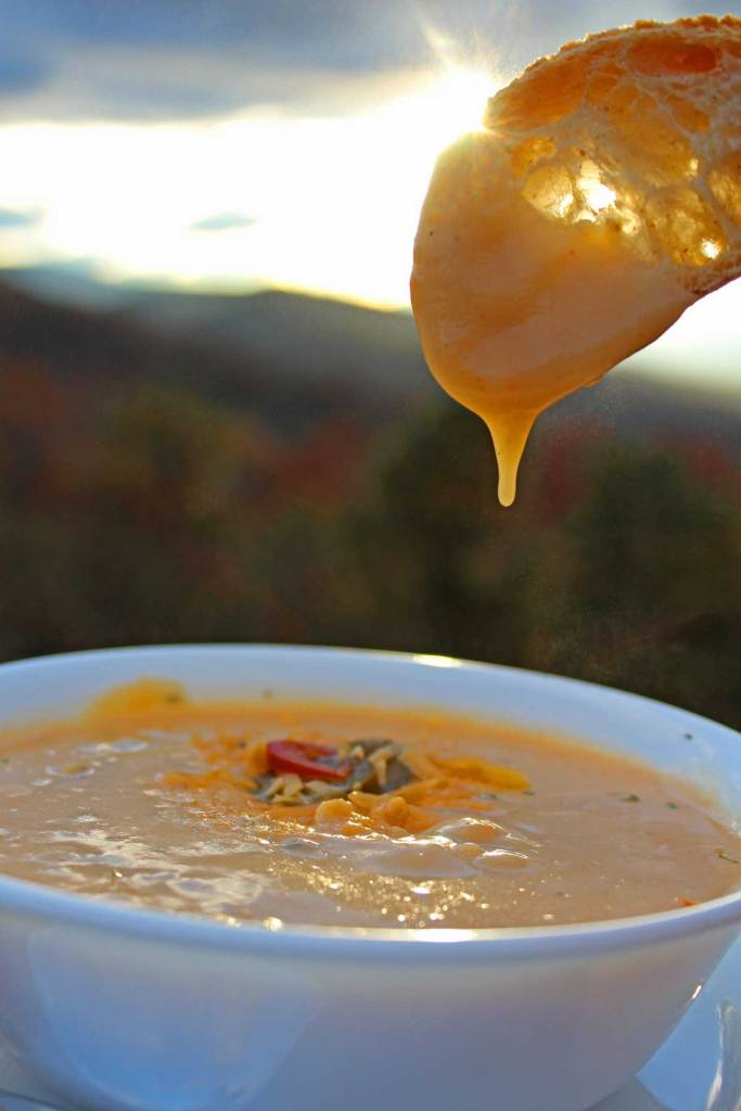 This homemade Potato Cheddar Soup is a hearty rich and creamy soup with richly seasoned flavors that will keep you coming back for more. A vegetarian treat!