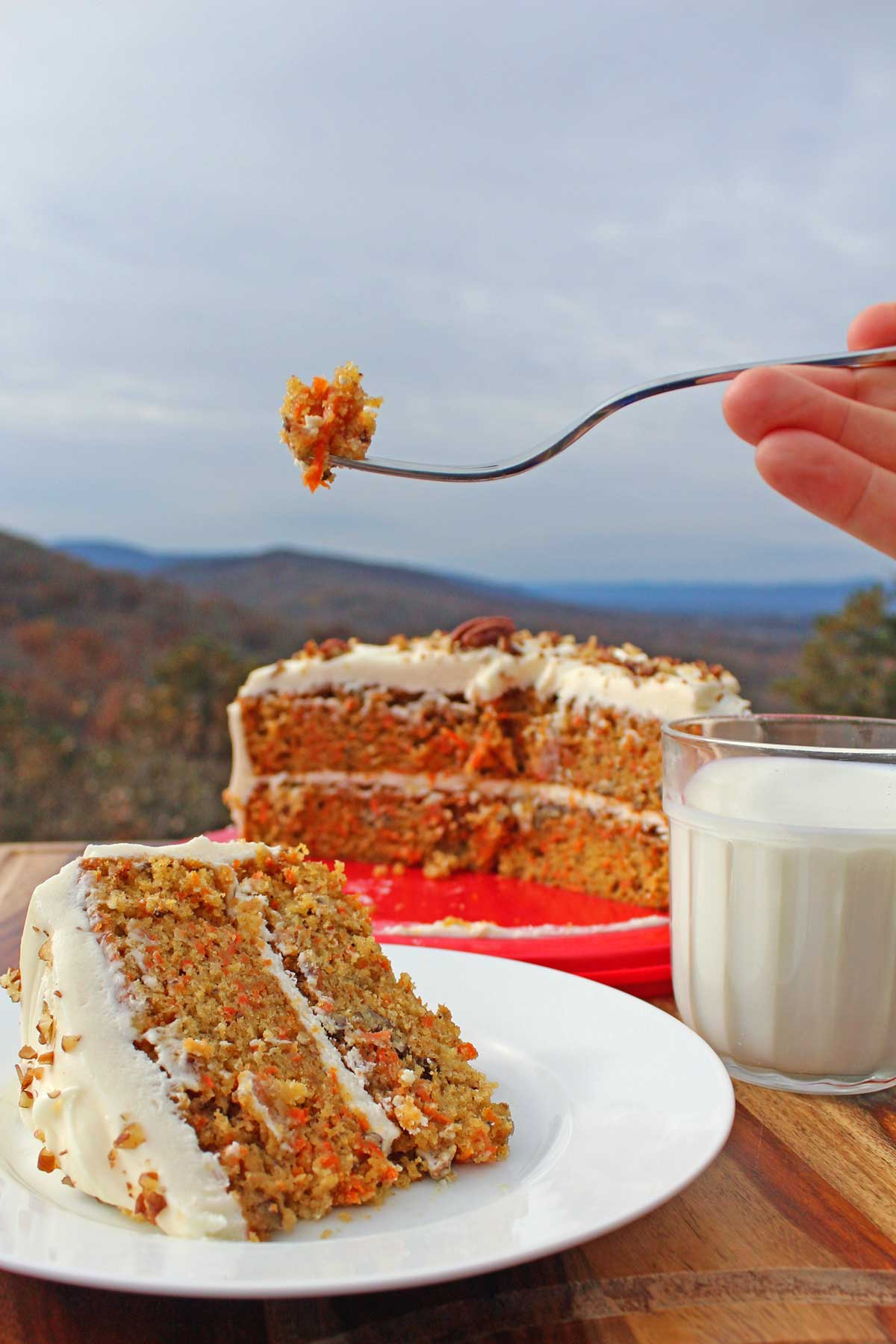 The sweetness of the carrots, the warmth of the cinnamon and ginger wrapped in a cream cheese frosting with pecans makes this the ultimate carrot cake!