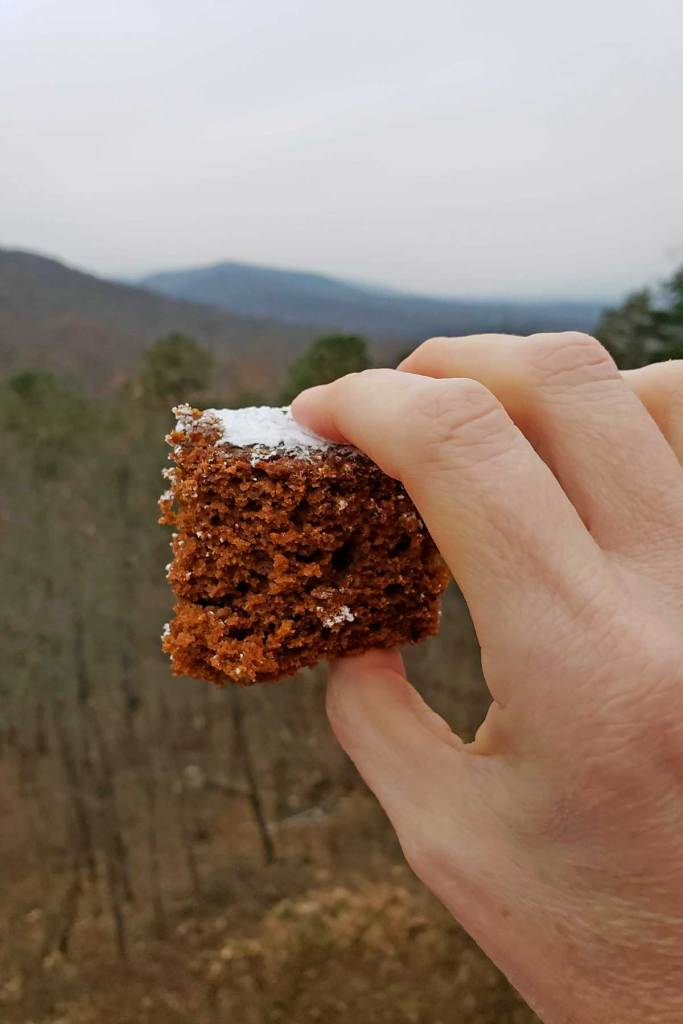 Easy to make, this gingerbread cake has old-fashioned flavors of ginger and molasses. A rich, fluffy and moist spiced cake to enjoy this holiday season.