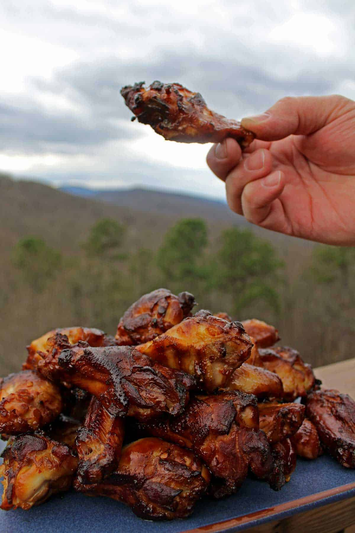 David's hand holding up a chicken wing over a pile of chicken wings on a plate in front of the mountain backdrop