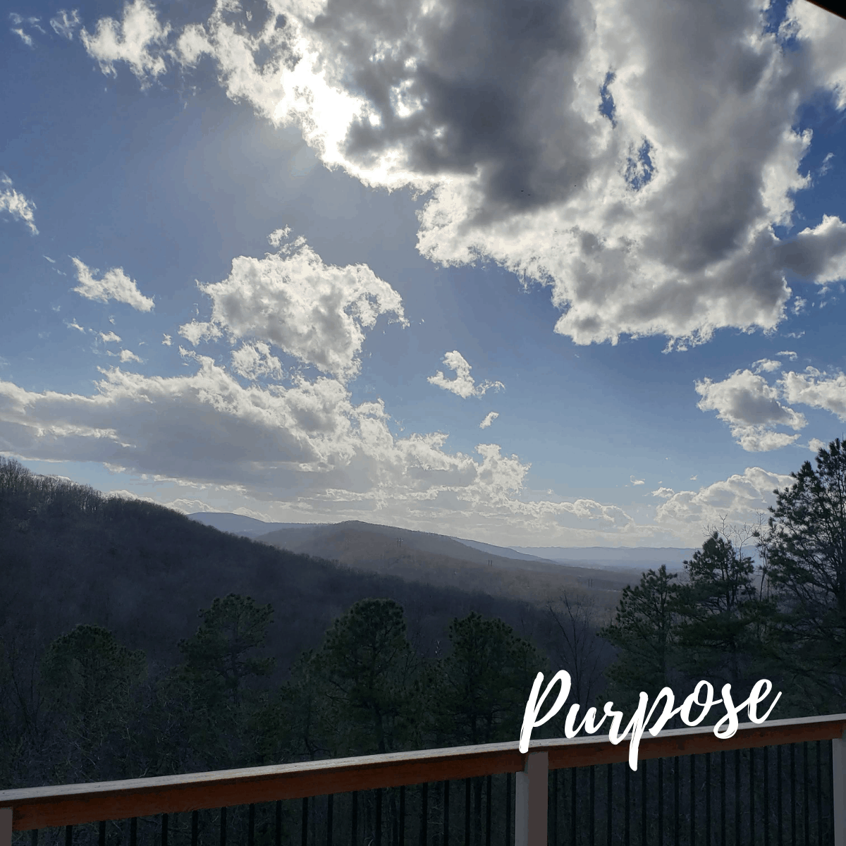 Purpose: The Mountain Kitchen 6 Years Later