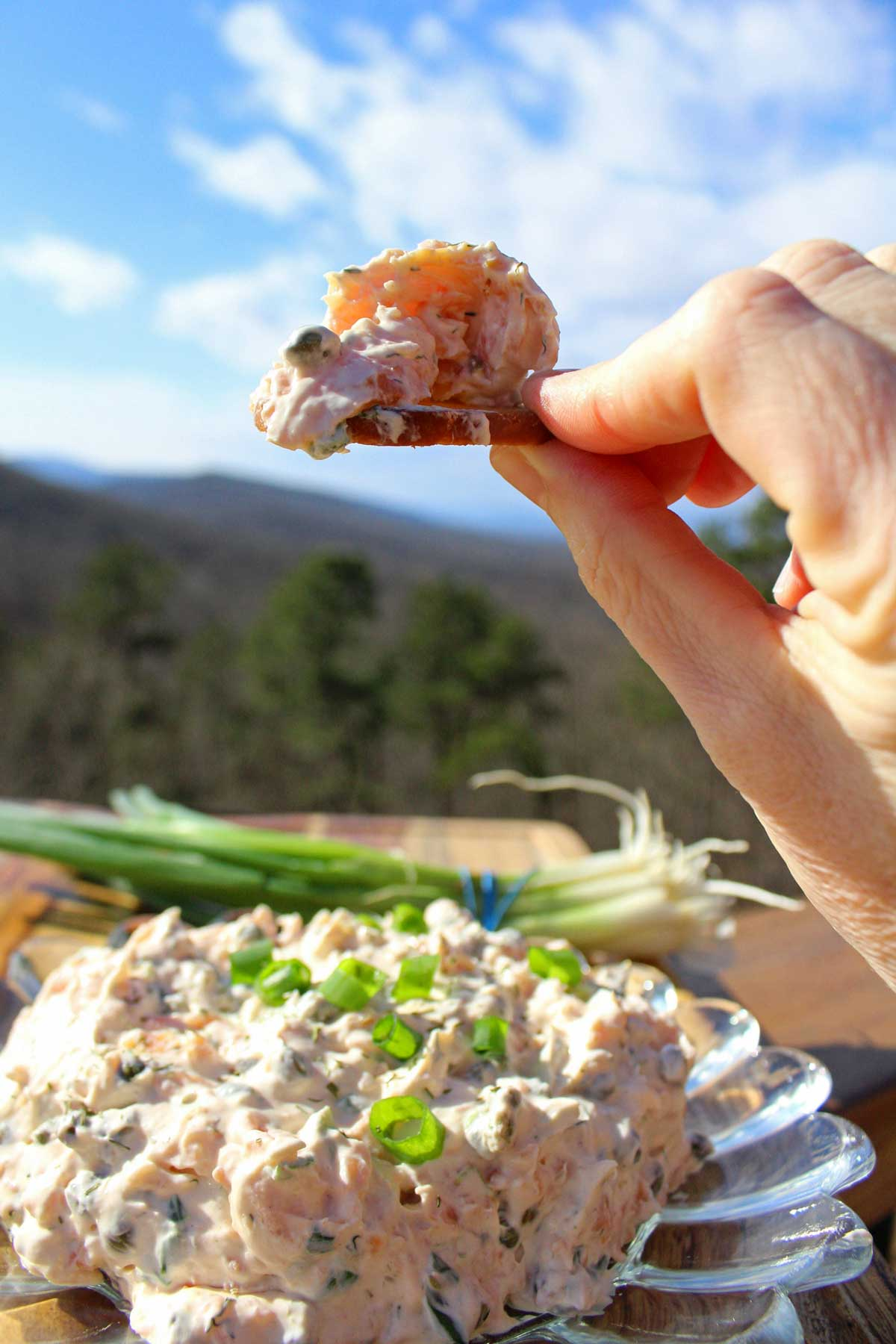 This salmon spread is a quick and easy appetizer made with cream cheese and smoked salmon fresh herbs, lemon juice, Worcestershire, and hot sauce. Delicious!