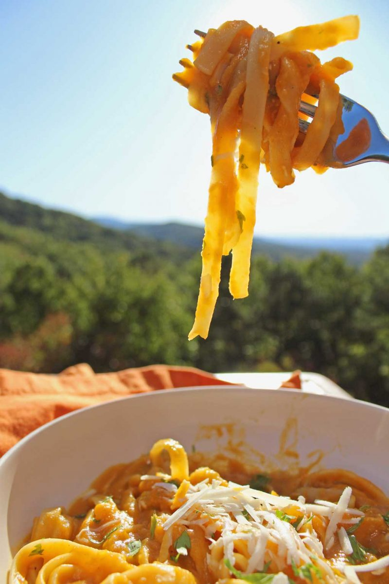 twirled pasta on fork with mountain view