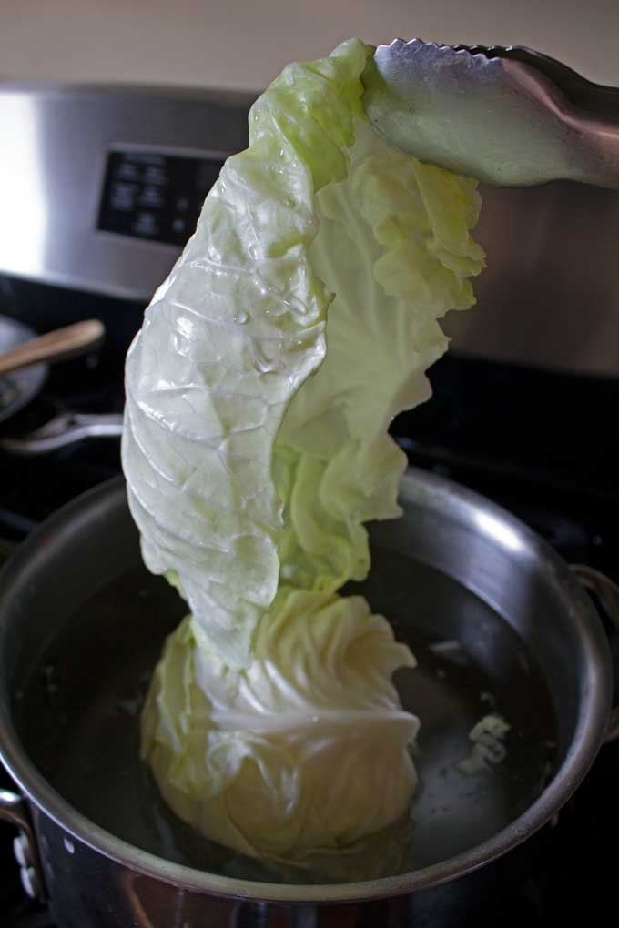 pulling cabbage leaf out of pot