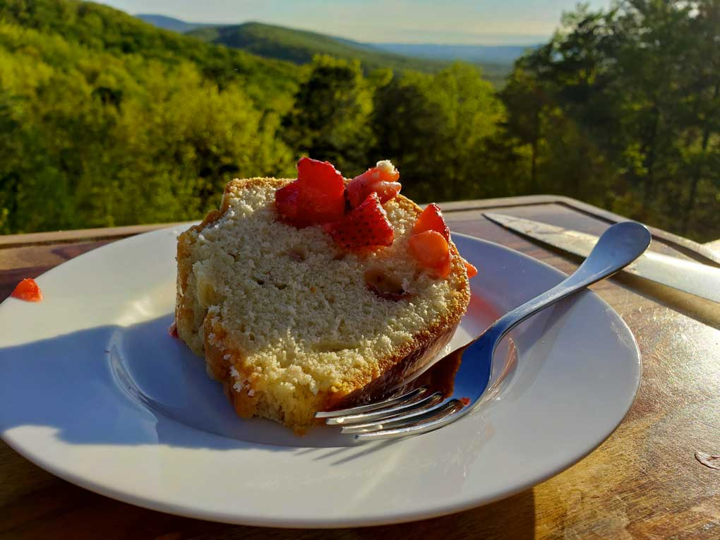 sliced of cake on plate with mountain view