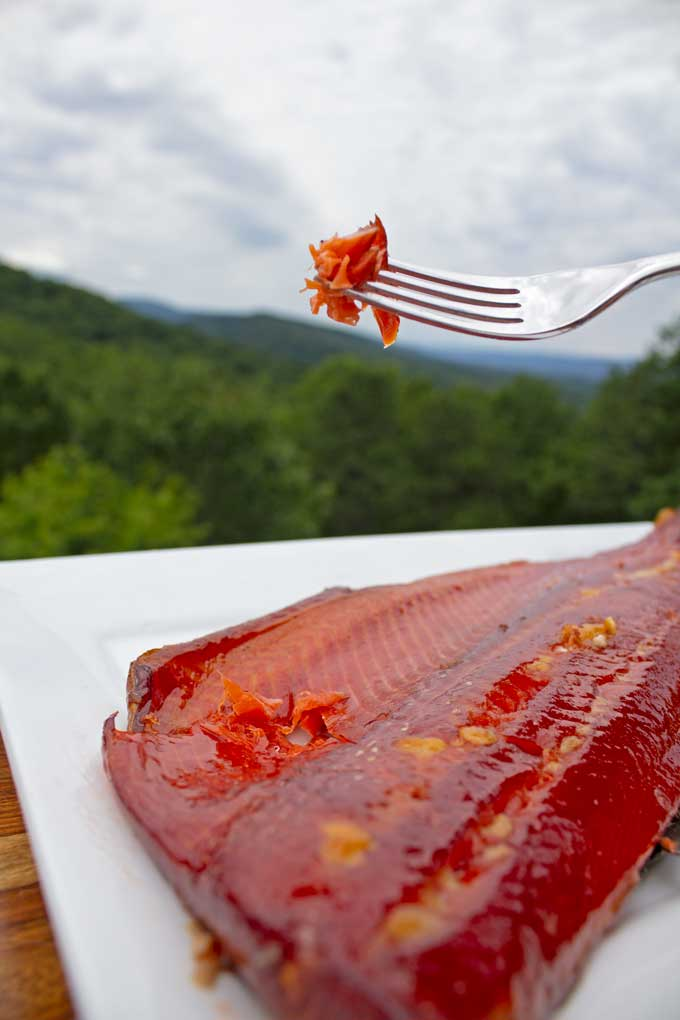 The 3 most important steps to smoked salmon are curing, drying and temperature. This step-by-step guide will help you smoke salmon in your own backyard!