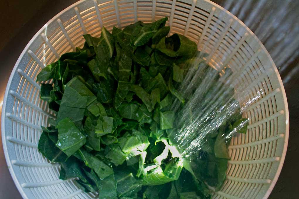 rinsing collard leaves