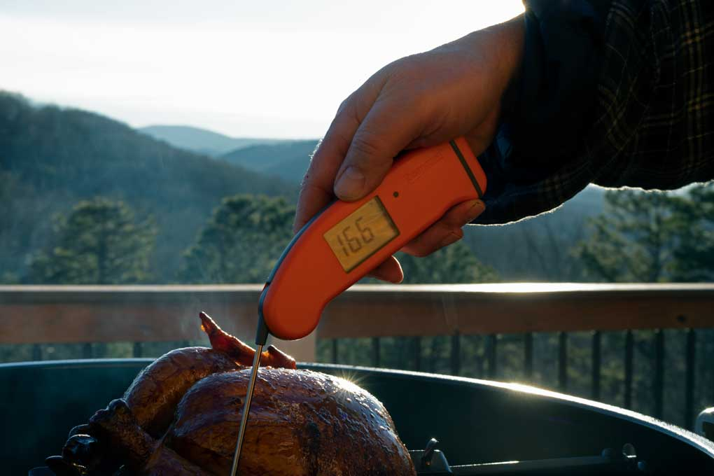 instant-read thermometer checking temperature