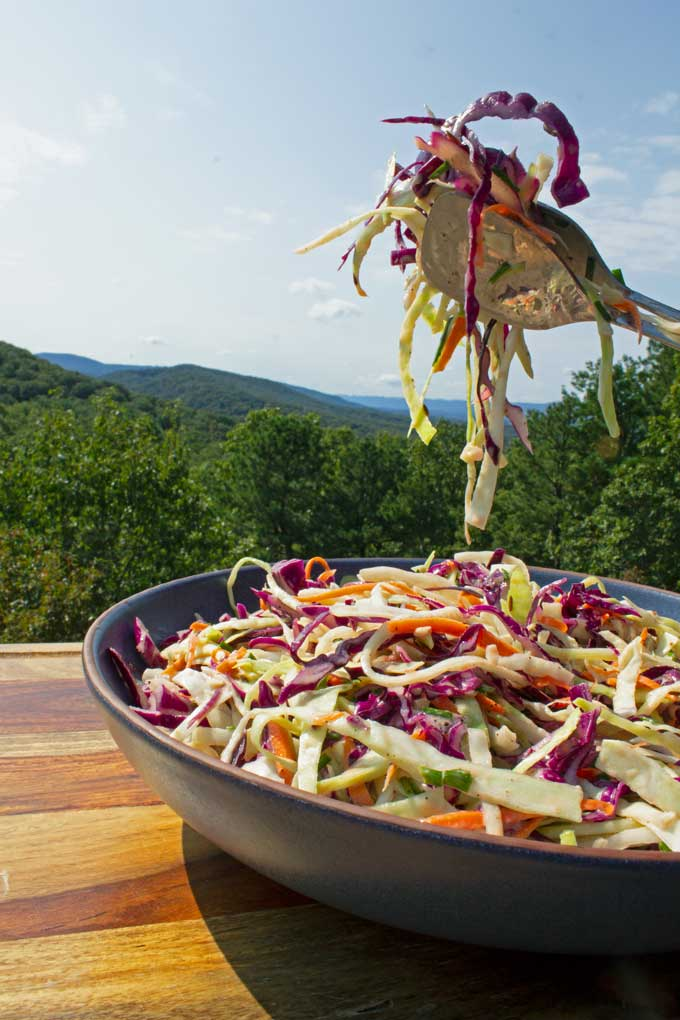 tongs holding coleslaw above bowl with mountain view