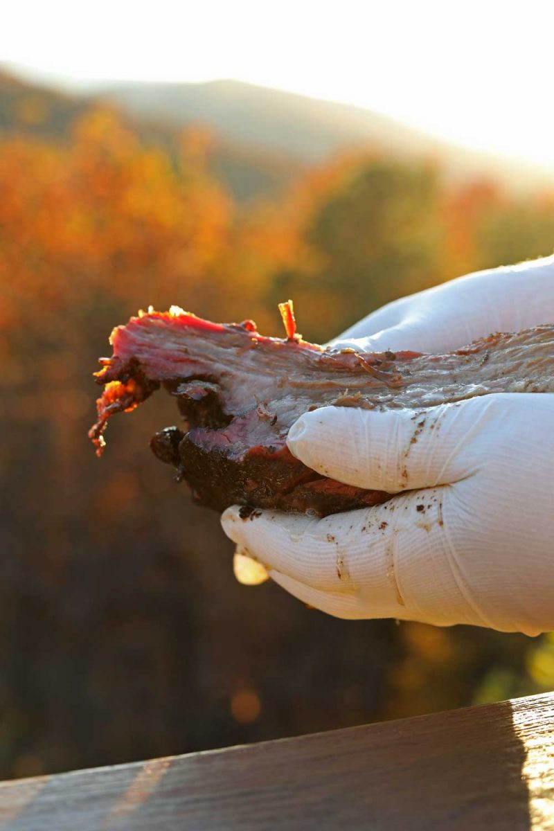 gloved hands holding brisket with mountain view