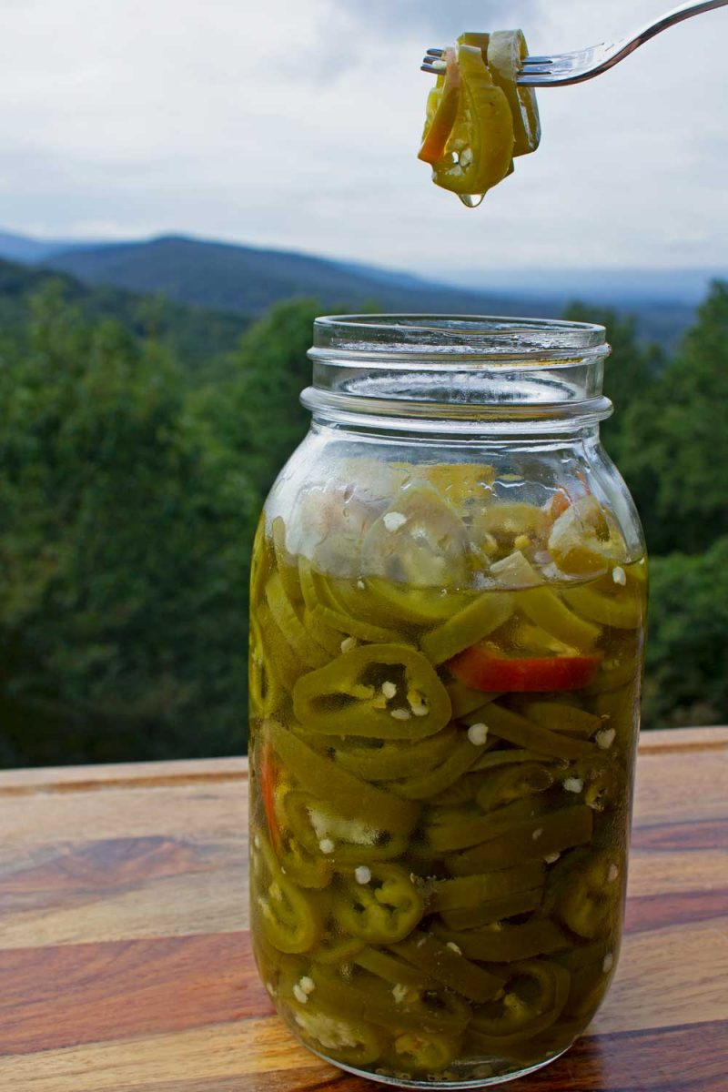 jar of candied jalapenos with mountain view