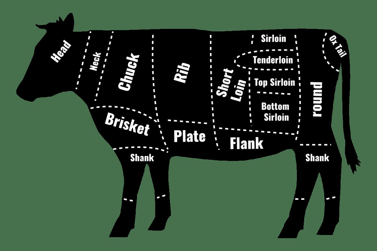 beef diagram of cuts
