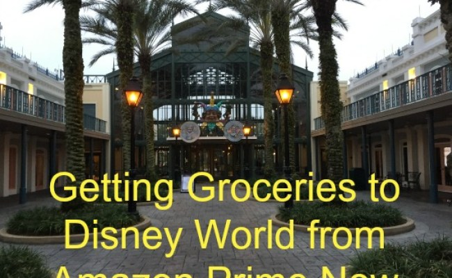 Getting Groceries To Walt Disney World From Amazon Prime Now