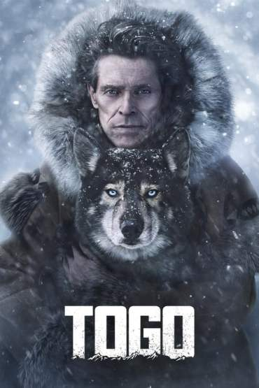 Download Disney+ Togo (2019) (Hindi Dubbed + English) 480p [450MB] || 720p [1GB] || 1080p [1.8GB]