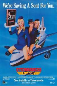 Stewardess School movie poster