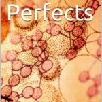 Perfects serialised